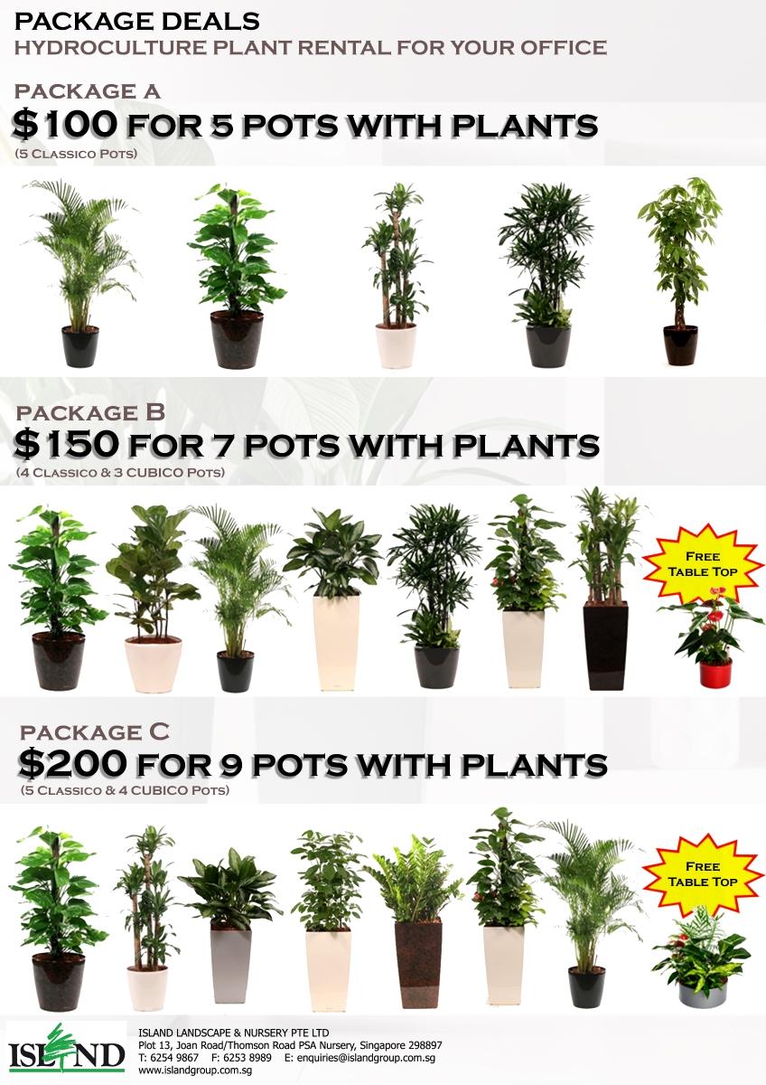Plant Al Package